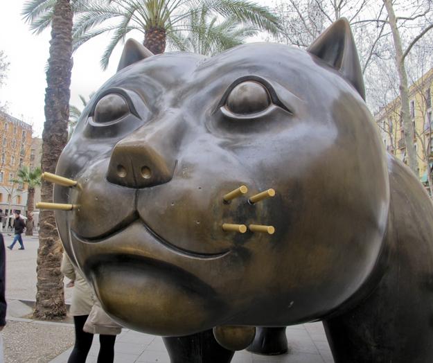 El gato del Raval