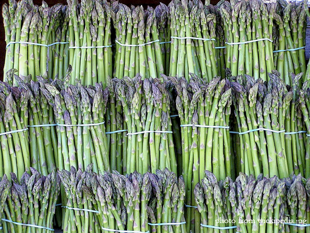 Asparagus photo wikipedia labelled