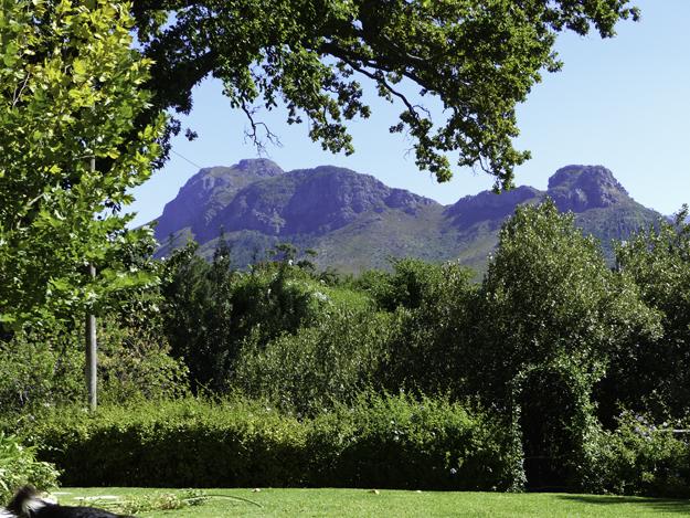 view in Franschhoek