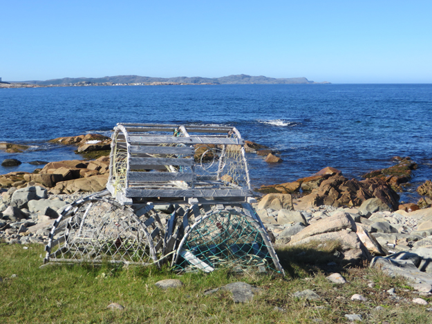 lobster traps 2