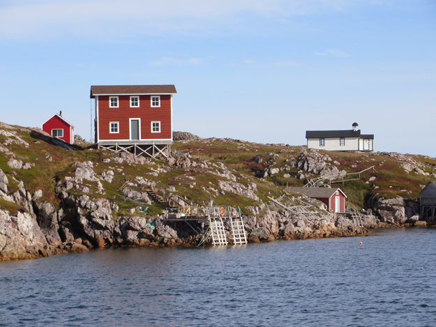 shore of little fogo island