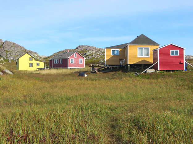 summer cottages on little fogo